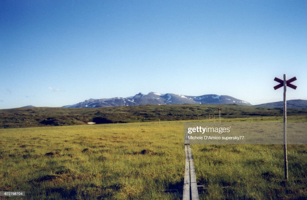 The wooden catwalk in the boggy tundra : Stock Photo