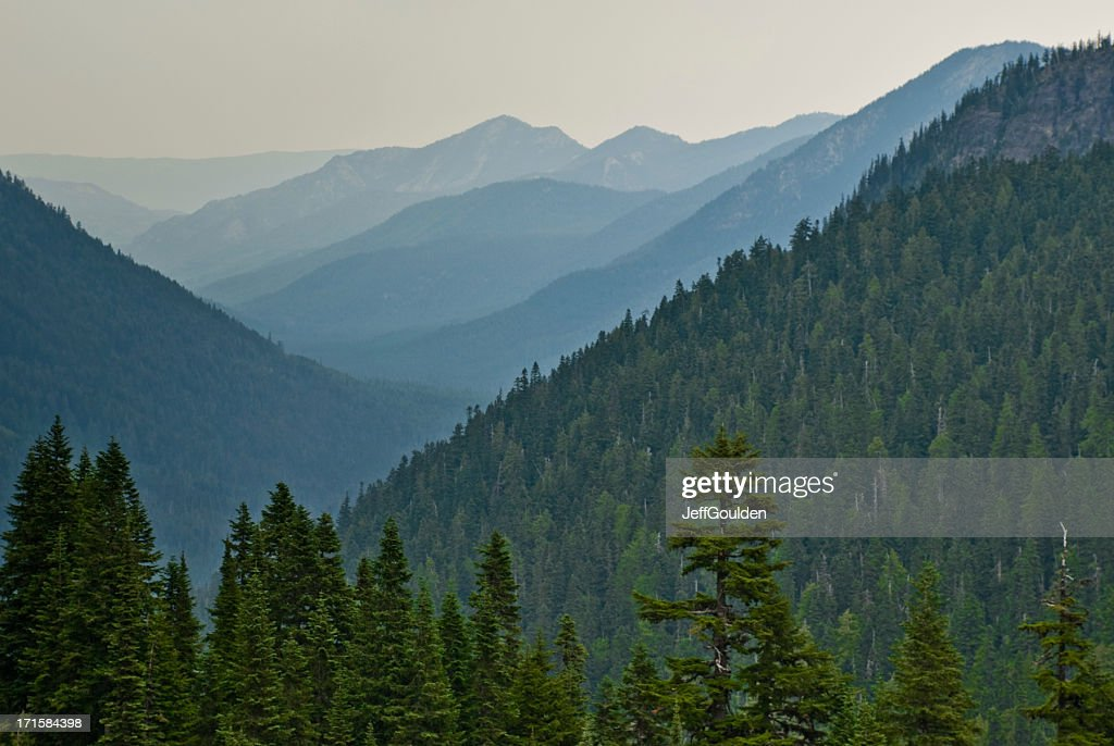 Early Morning Fog in the Mountains : Stock Photo