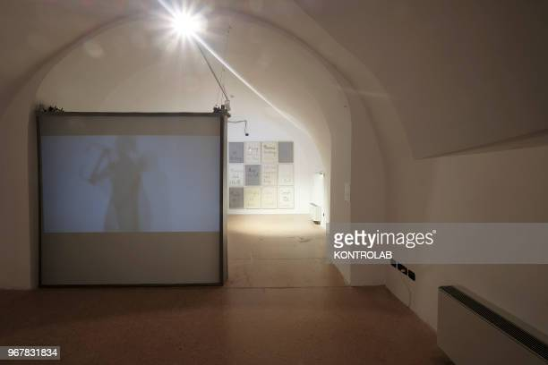 The works of the artists Masbedo and Franko B are show in the permanent exhibition of Garuzzo Institute for the Visual Art inside The Castiglia in...