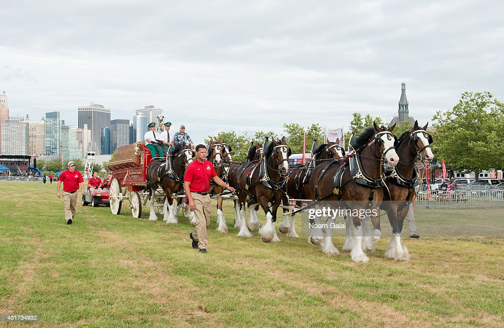 The world famous Budweiser Clydesdales (celebrating their 81st anniversary with Anheuser-Busch) appear at the Freedom & Fireworks Festival in Liberty State Park on July 4, 2014, where Budweiser also presented a $3 million donation to the Folds of Honor Foundation to benefit families of military killed or disabled in action.