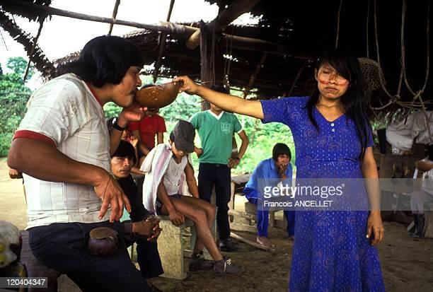 The world of Jivaro Indians in Ecuador in 1991 Jivaro Indian woman serving the Chicha beer made of manioc to a man Rio Pastaza Shuar ethnic group...