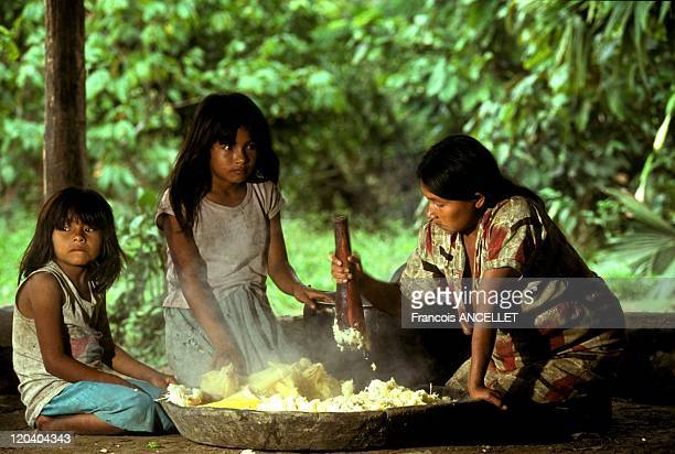 The world of Jivaro Indians in Ecuador in 1991 Making the Chicha beer from manioc After the cooking Rio Pastaza Achuar ethnic group Ecuadorian Amazon