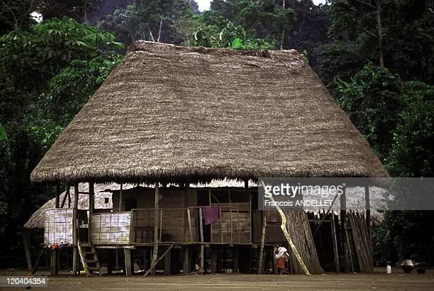 The world of Jivaro Indians in Ecuador in 1992 Achuar dwelling Rio Pastaza Achuar ethnic group Ecuadorian Amazon