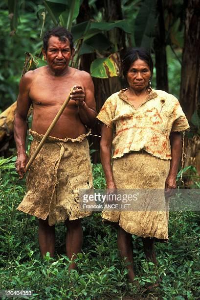 The world of Jivaro Indians in Ecuador in 1992 Couple of Zaparo Indians dressed in tree bark Rio Conambo Ecuadorian Amazon