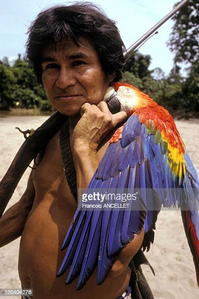 The world of Jivaro Indians in Ecuador in 1992 El Chacal returning from the parrot hunt Rio Pindoyacu Achuar ethnic group