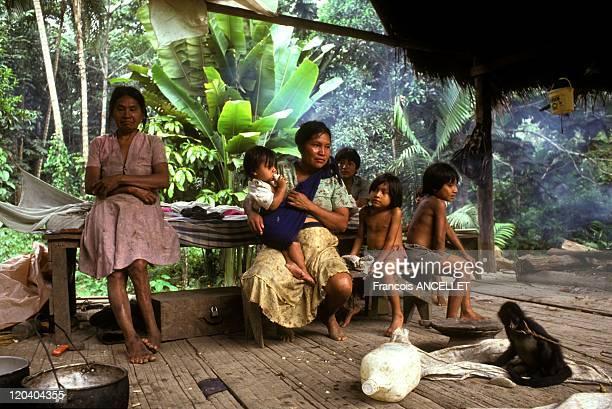 The world of Jivaro Indians in Ecuador in 1992 Zaparo family in their home Rio Conambo Ecuadorian Amazon