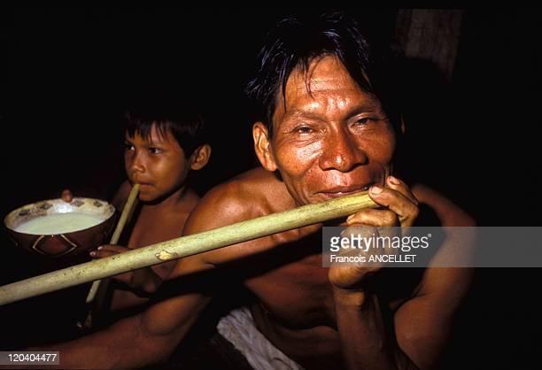 The world of Jivaro Indians in Ecuador in 1993 Night of visions and of magic to the sound of the flute Rio Conambo Zaparo ethnic group Ecuadorian...