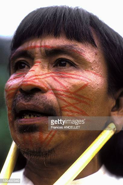 The world of Jivaro Indians in Ecuador in 1993 Pinientsa ready to wage war painting of the tiger of the jungle Rio Pindoyacu Achuar ethnic group...