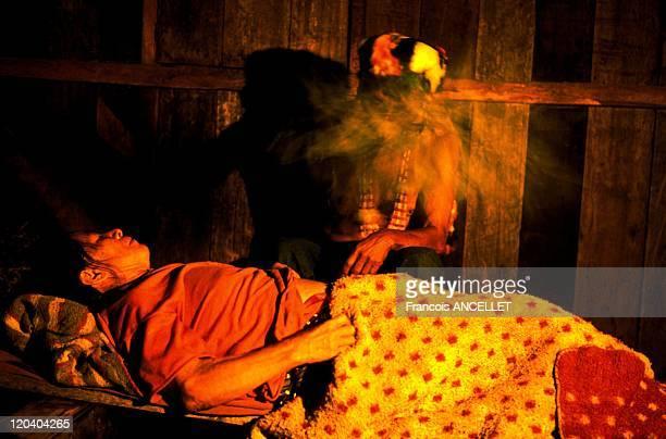 The world of Jivaro Indians in Ecuador in 1993 The Macas Shaman purifying a sick person with his vegetal rattle Shuar ethnic group Ecuadorian Amazon