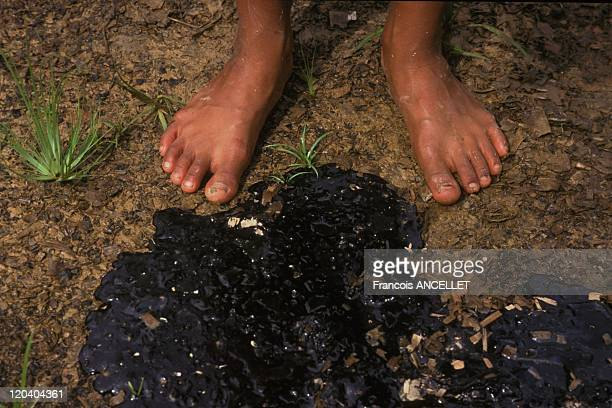 The world of Jivaro Indians in Ecuador in 1995 Pollution of the Amazon from oil Ecological disaster pollution of the rivers destruction of the...