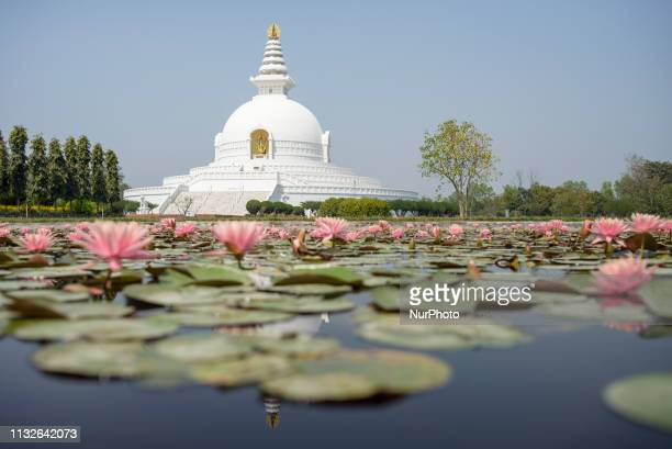 The World Peace Pagoda on the territory of the Monastic Zone Lumbini Nepal on March 20 2019 Lumbini is one of the worlds most Buddhist spiritual...