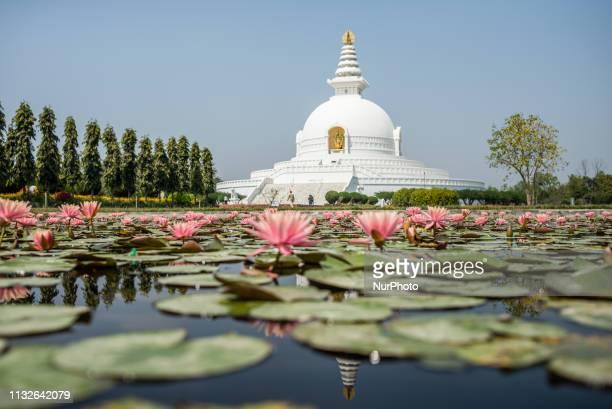 The World Peace Pagoda on the territory of the Monastic Zone Lumbini Nepal on March 20 2019 Lumbini is one of the worlds most Buddhist spiritual...