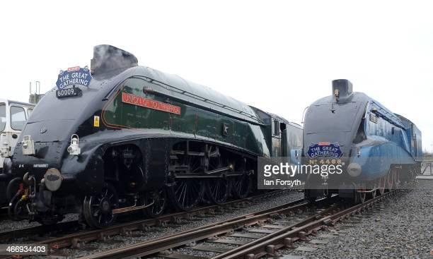 The world record breaking Class 4 locomotive Mallard and Union of South Africa are moved into position at the National Railway Museum in Shildon on...
