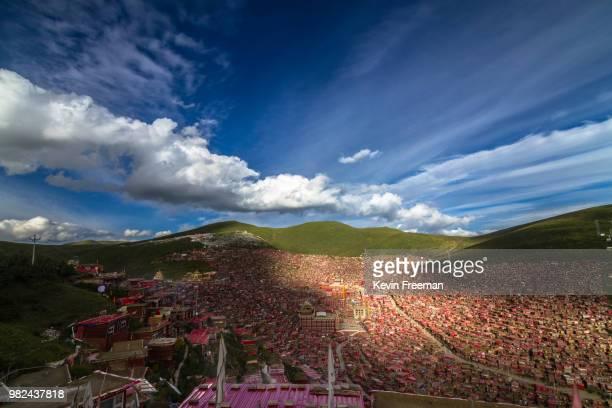 the world's largest buddhist