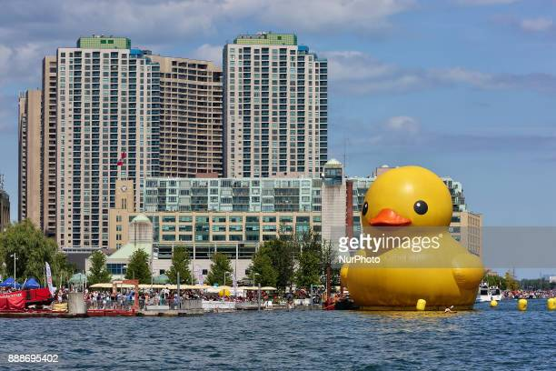 The worlds largest rubber duck arrived in Toronto Ontario Canada on July 03 2017 The giant rubber duck visited the city of Toronto as part of the...