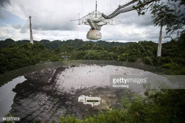 The world's largest single dish radio telescope stands at the Arecibo Observatory in Arecibo Puerto Rico on Friday Aug 25 2017 Over the years Puerto...
