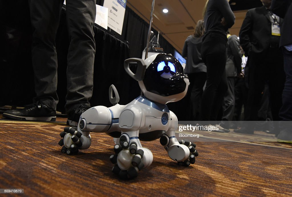 The WowWee CHiP robot dog is seen at the 2016 Consumer