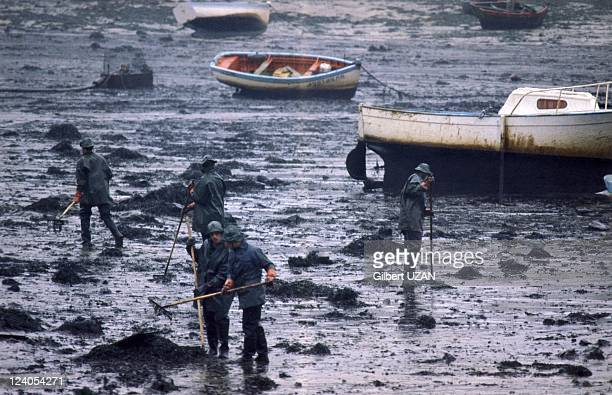 The wreck of the Amoco Cadiz in France on March 23, 1978 - Cleaning up beaches.