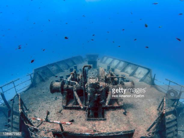 the wreck of the um el faroud off the coast of malta - sunken stock pictures, royalty-free photos & images