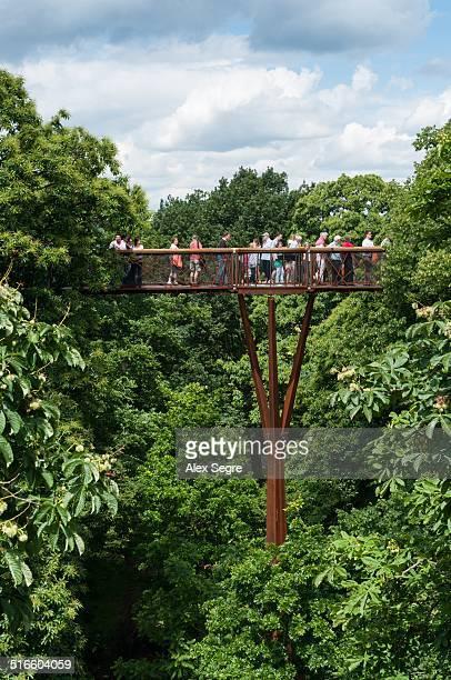 The Xstrata Treetop Walkway at Kew Gardens, London, UK