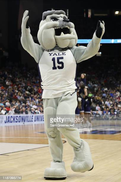 The Yale Bulldogs mascot performs during the first round of the 2019 NCAA Men's Basketball Tournament at VyStar Jacksonville Veterans Memorial Arena...
