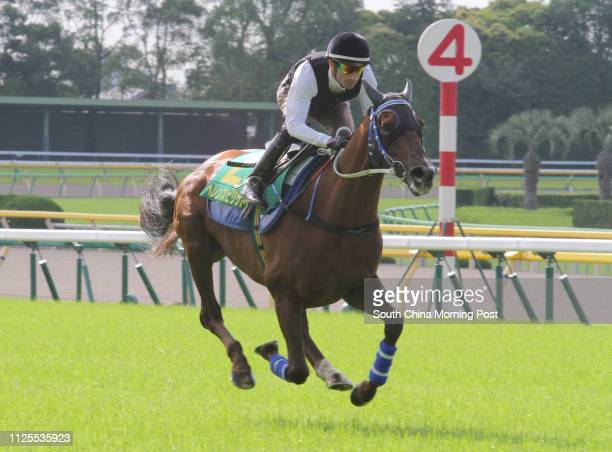 The Yasuda Kinen 2013 runner HELENE SPIRIT ridden by Gerald Mosse gallop on the turf in Tokyo Racecourse 31MAY13