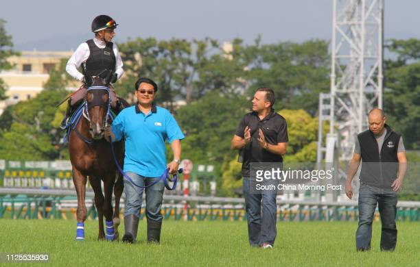 The Yasuda Kinen 2013 runner HELENE SPIRIT ridden by Gerald Mosse going back to stable after gallop on the turf in Tokyo Racecourse Picture shows...