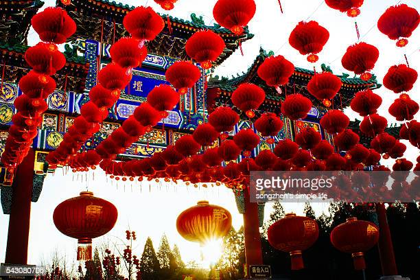 the year of sheep - beijing province stock photos and pictures