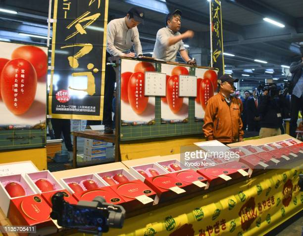 """The year's first auction of brand-name mangoes, """"Taiyo no Tamago"""" , grown in the southwestern Japan prefecture of Miyazaki, is held at a local..."""