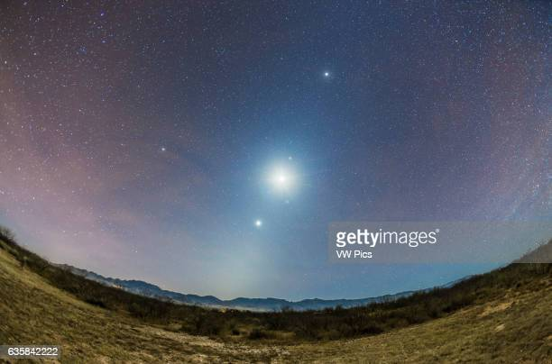 The Zodiacal Light of a late autumn/early winter morning faintly visible amid the moonlight from the waning crescent Moon at centre here as the...