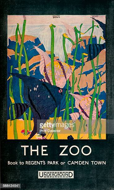 The Zoo' 1924 London Zoo is the world's oldest scientific zoo and opened in London April 27th 1828 From The Studio Volume 90 Artist Gregory Brown