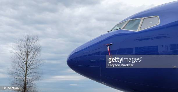 The10000th 737 jet a 737 MAX 8 is pictured at Boeing factory on March 13 2018 in Renton Washington The first 737 was delivered in 1967