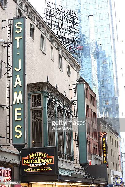 Theatre marquee unveiling for the new Woody Allen Musical 'Bullets Over Broadway' at St James Theater on November 11 2013 in New York City