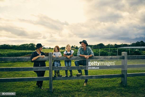 their little family of four on the farm - family stock pictures, royalty-free photos & images