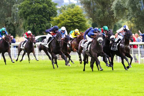 FRA: Meeting of Compiegne - Quinte +