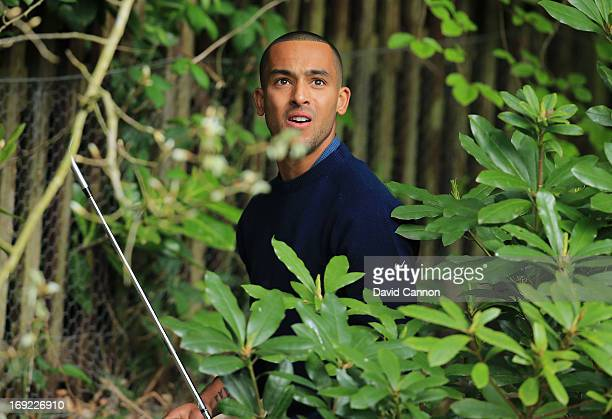 Theo Walcott of Arsenal hits from the bushes on the 4th hole during the Pro-Am round prior to the BMW PGA Championship on the West Course at...