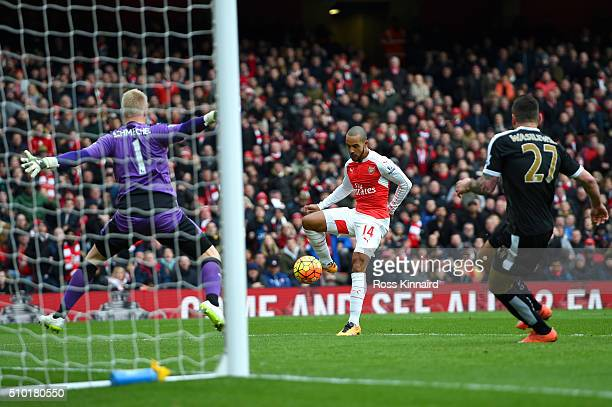 Theo Walcott of Arsenal scores his team's first goal during the Barclays Premier League match between Arsenal and Leicester City at Emirates Stadium...
