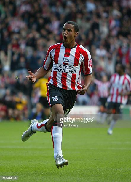Theo Walcott of Southampton celebrates scoring a goal during the Coca-Cola Championship match between Southampton and Stoke City at St Mary's Stadium...