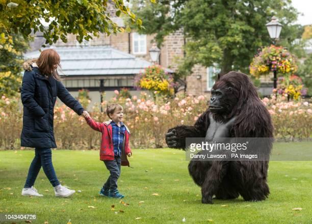 Theodore Kiaie interacts with a Tourism Uganda lifesize animatronic mountain gorilla during the Wildlife amp Safari Travel Show at Harrogate...