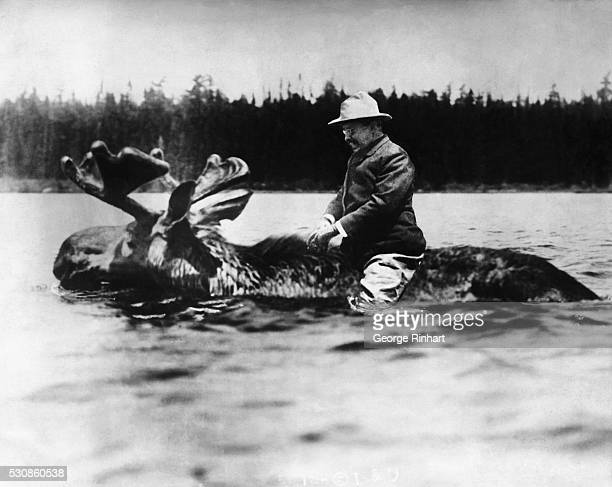 Theodore Roosevelt is shown riding a moose Collaged photograph undated