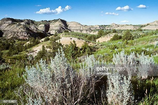 sagebrush and badlands - north dakota stock pictures, royalty-free photos & images