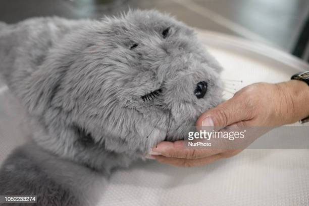 Therapeutic Seal Robot PARO Guinness certified as the first therapy robot is exhibited at the National Museum of Emerging Science and Innovation in...