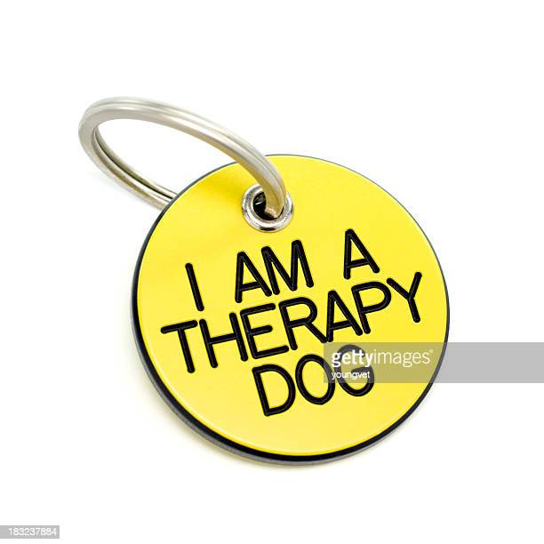 therapy dog tag - collar stock pictures, royalty-free photos & images