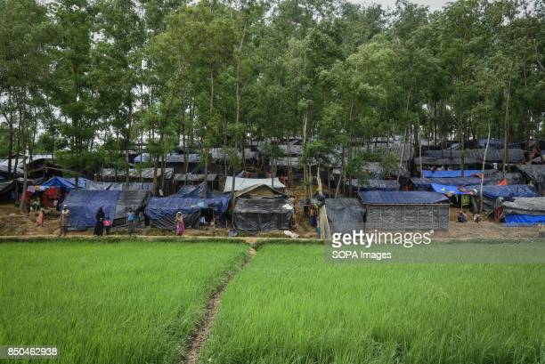 COX'S BAZAR BANGLADESH There are a lots of refugee camp being build between Teknaf to Ukhiya of Coxs Bazaar district Thousands of Rohingyas still...