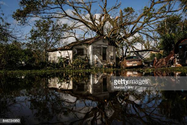 There is still floodwater sitting in residential neighborhoods of Immokalee Fla on Sept 11 2017