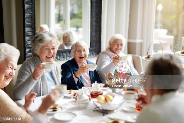 there's nothing like a good old tea party! - senior adult stock pictures, royalty-free photos & images