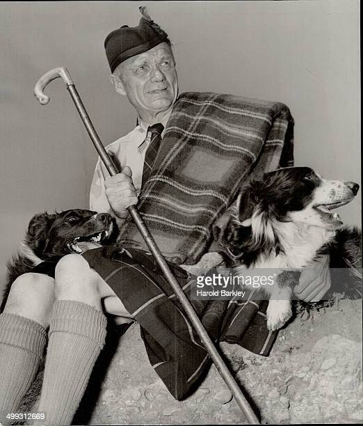 There's plenty of Scotch here what with shepherd crook plaid and Glengarry bonnet together with the Scotch Border Collies the dog that Robbie Burns...
