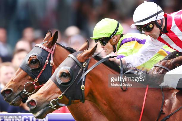 Thermal Current ridden by Craig Williams wins the race 6 Absolut Stakes at Flemington during Oaks Day at Flemington Racecourse on November 08 2018 in...
