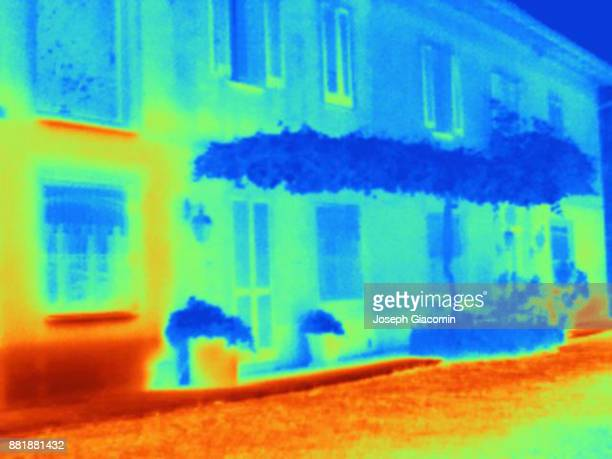 Thermal image illustrating the cooling properties of a vine pergola attached to a home