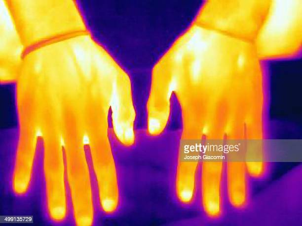 Thermal image of weight lifters hands. The image shows the heat left after training